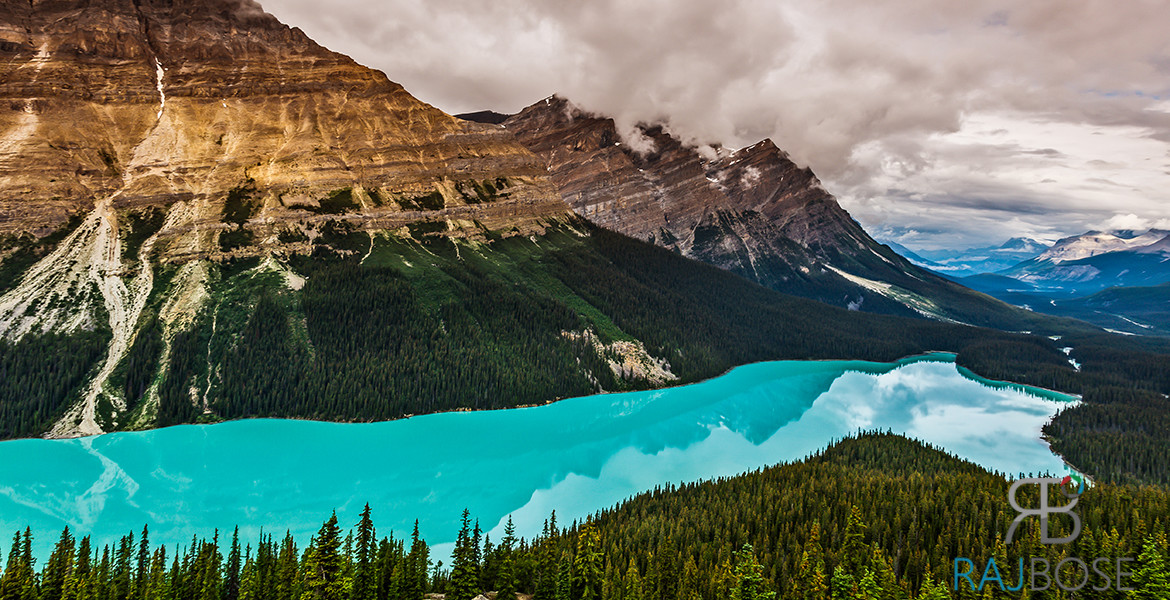 Peyto Lake Patriciain Banff  National Park, Canada