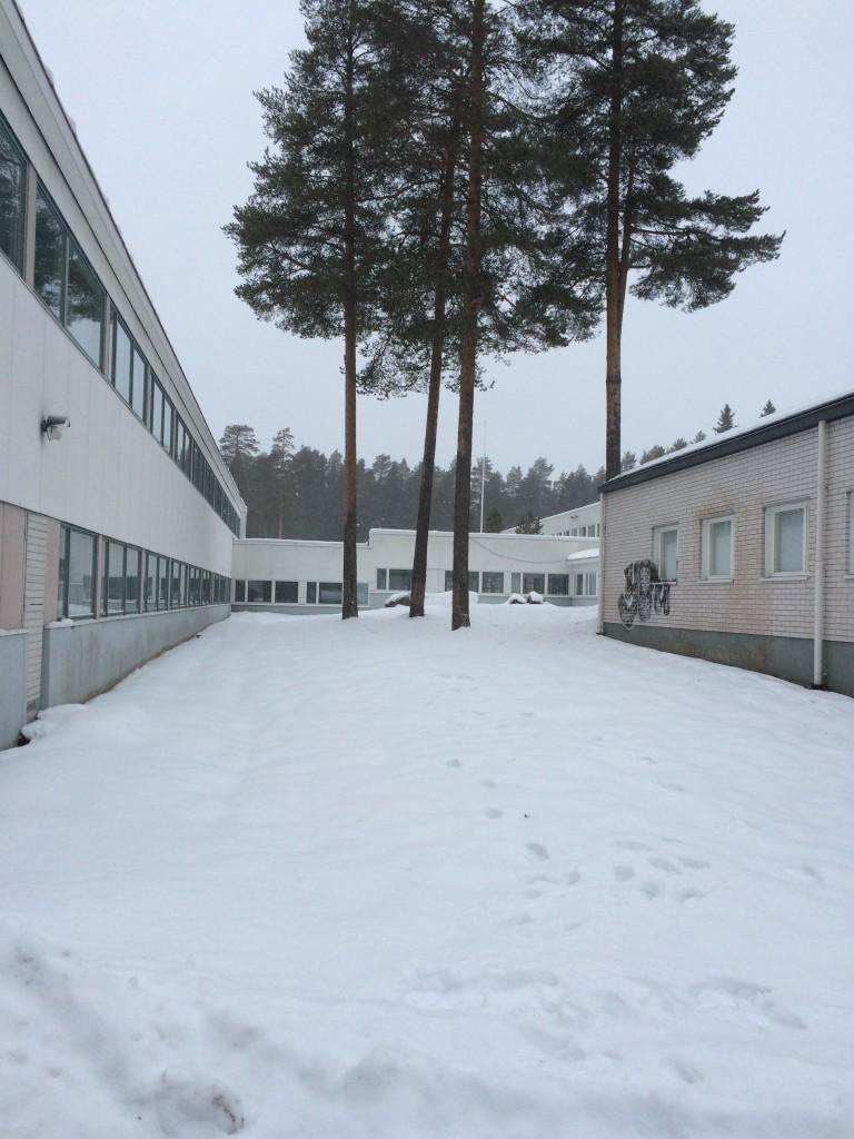 009 Schoolyard 1
